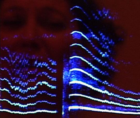 le spectre de la voix